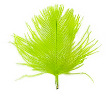 CdC Chartreuse färgvisning copy copy