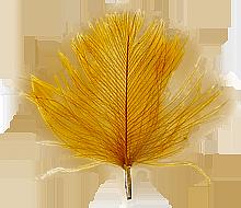 CdC Cinnamon färgvisning copy copy
