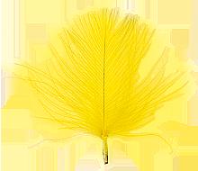 CdC Yellow färgvisning copy copy